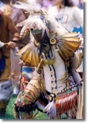 Traditional Pow Wow dancer